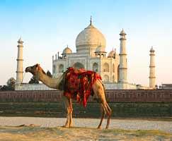 Agra Package